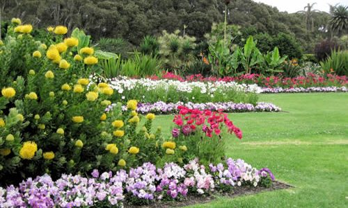 The Majestic Royal Botanic Gardens